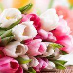 Доставка цветов от Buketsi.ru